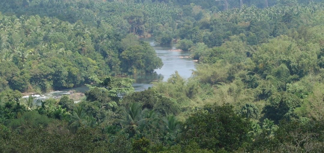 Seetha Nadi, free flowing river in Karnataka Western Ghats. Photo: SANDRP
