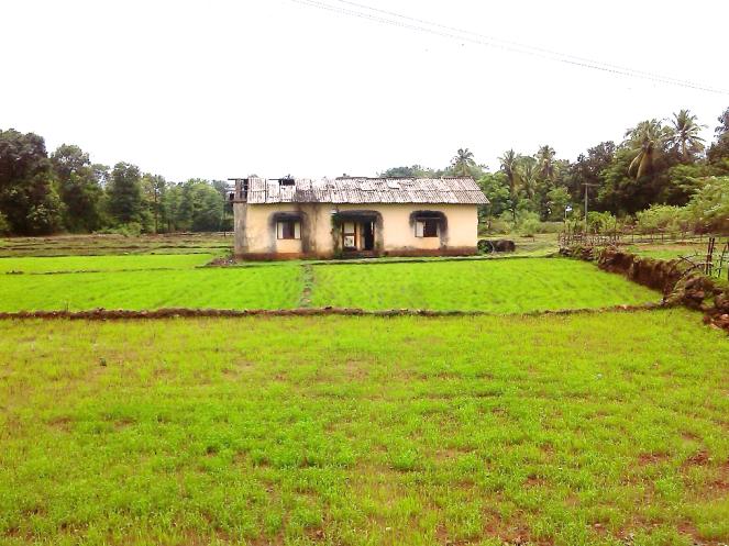 Abandoned site office of teh nardawe Dam at Nardawe Photo: Damodar Pujari