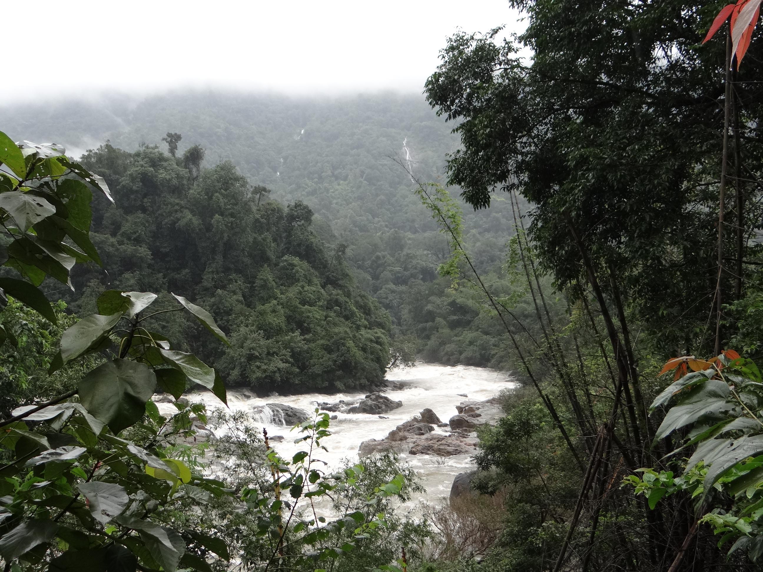 Headwaters of Netravathi and Gundia threatened by Yettinahole Diversion Photo: Parineeta Dandekar, SANDRP