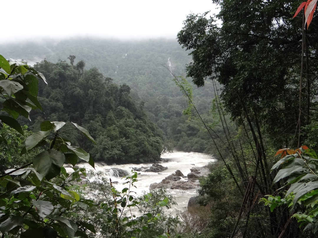 Gundia River and surrounding forests threatened by the 200 MW Gundia Dam and Yettinahole Diversion Photo: SANDRP