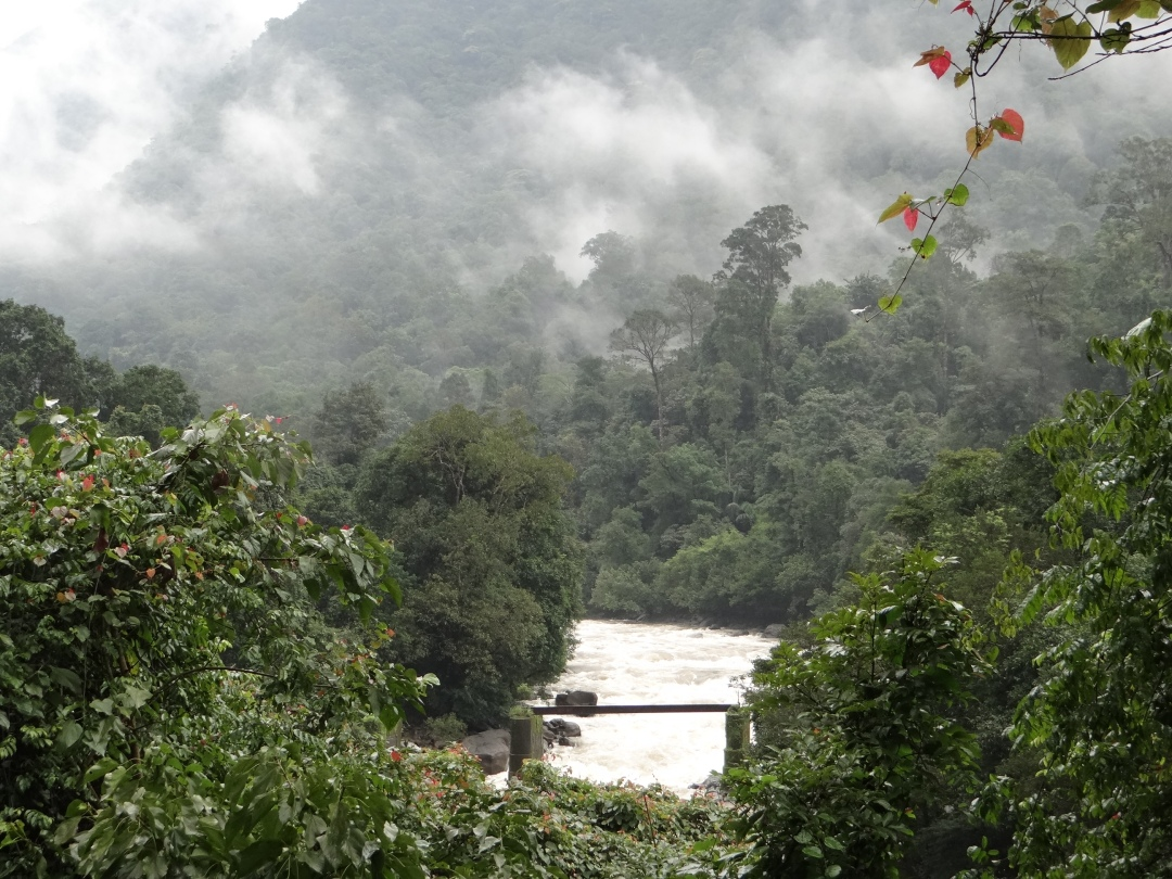 River Gundia, formed by Yettinahole and other streams which are to be diverted by Yettinahole Diversion Project Photo: SANDRP