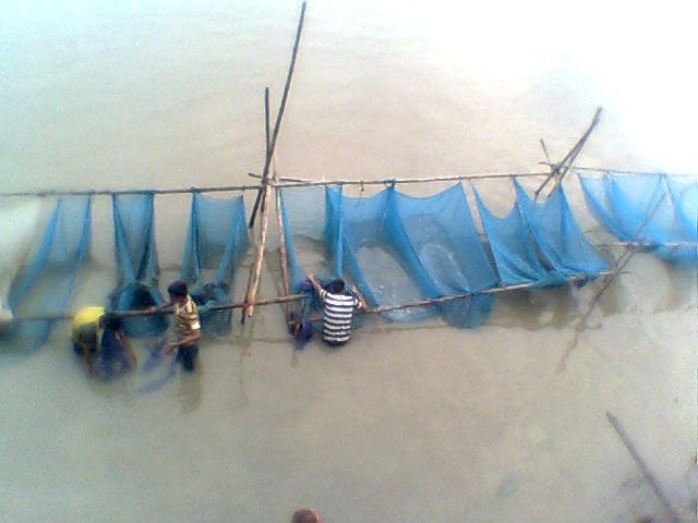 Fish, preserved in nets along Brahmaputra. Photo: Himanshu Thakkar, SANDRP