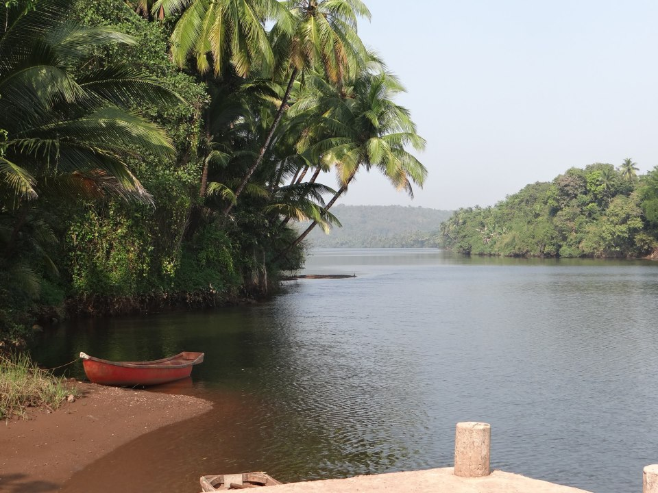 Estuary of the Karli River in Western Ghats. Photo SANDRP