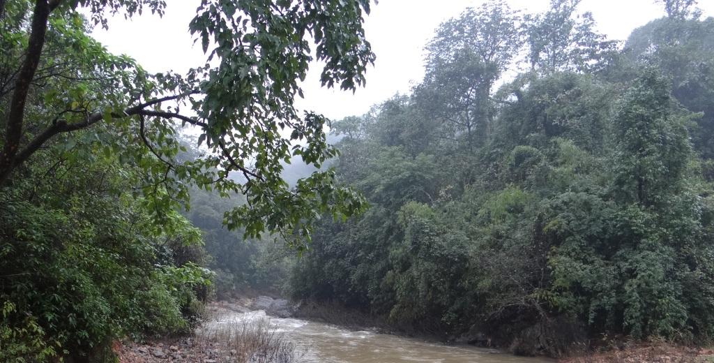 Yettinahole River Photo: SANDRP