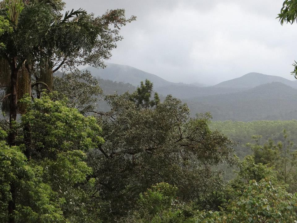 Yettinahole Catchment and surrounding forests Photo: SANDRP