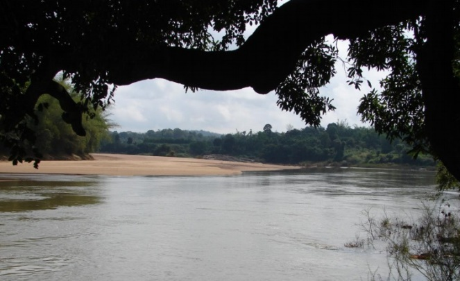 Lovely Tunga River at Chippalgudde fish Sanctuary Photo: Author