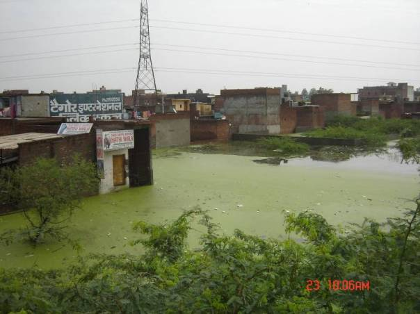 During Monsoon Yamuna Waters Reaches the Colonies Built on its Flood Plains