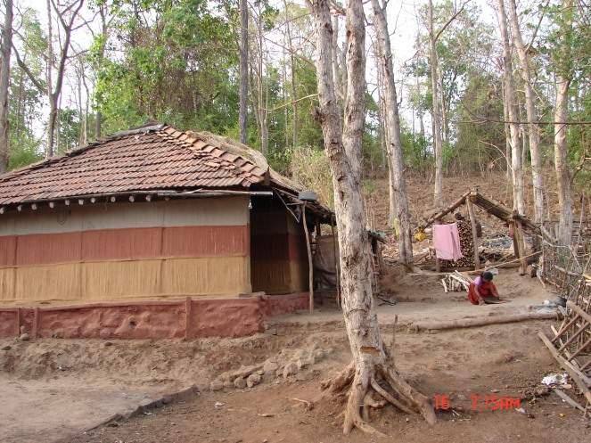 Tribal settlement at Ogade village which will be submerged. Photo: Parineeta Dandekar, SANDRP