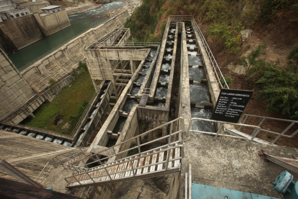 Fish Ladder at Kurichhu Hydropower Project, Bhutan: Some thoughts (2/5)