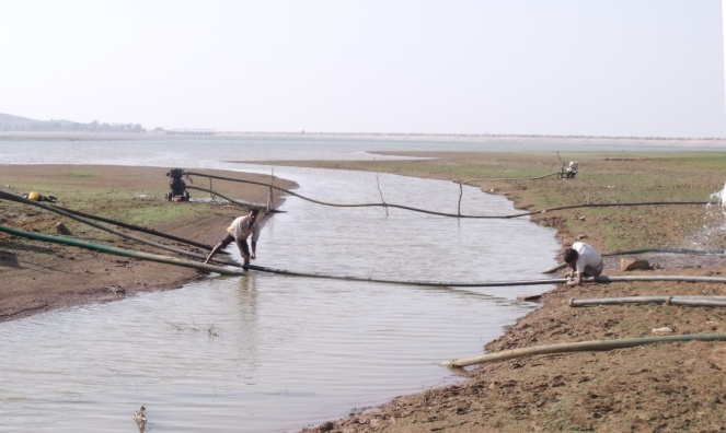 Picture 2: Upper Khajuri Reservoir| 10.02.2011. Photo: Debadityo Sinha