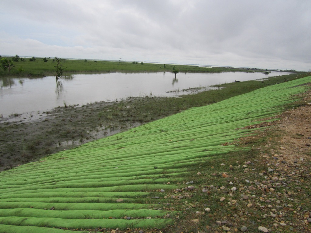 India's First Geo-tube embankment in Matmora in Dhakuakhana sub-division of Lakhimpur district in Assam.  Photo: Parag Jyoti Saikia