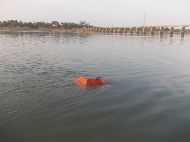 Small temple on the Rajghat Ghat submerged Sardar Sarovar Dam, In the background are Rajghat bridge and Chikhalda village Photo: Pancham Choyal, Badwani Bureau chief of Patrika