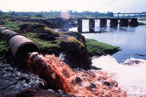 Pollution of Damanganga at Vapi Photo: Tehelka