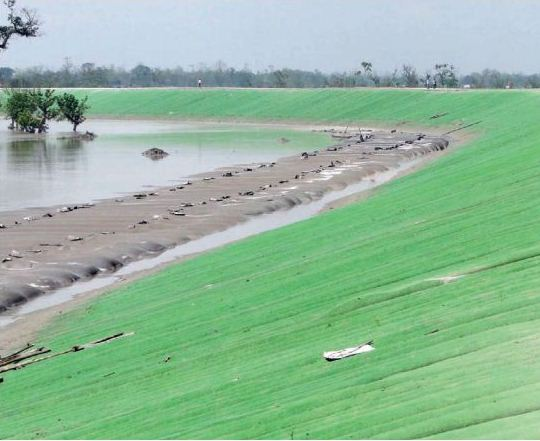 Matmora Geo-tube embankment after its construction in 2010. Source– Assam 2011, A Development Perspective, published by Planning and Development Dept., Govt. of Assam.