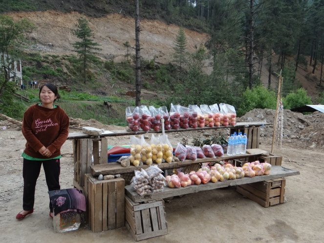 Fresh fruits, preserved in a storehouse on the stream! Photo: SANDRP