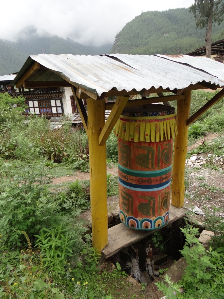 A tiny water wheel in agricultural fields of Paro Photo: SANDRP
