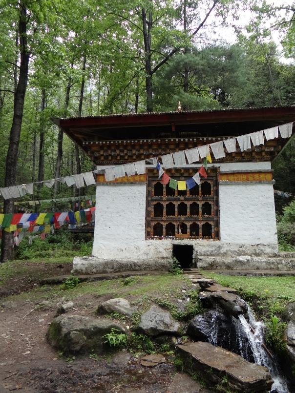 On way to Taktsang Monastery Photo: SANDRP