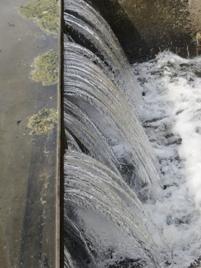 "Treated wastewater--it looks ""clean"" but the fecal coliform content is usually in the range of 100,000 MPN/100ml to 1,000,000 MPN/100ml. This is well above safe levels for bathing and human consumption"