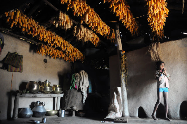 A Baiga home with harvested corn Photo: Aparna Pallavi, Down to Earth