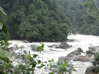 Netravathi River in its upper reaches Photo: Parineeta Dandekar, SANDRP