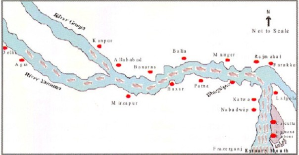 Migration route of Hilsa, Pre Farakka Barrage spanning about 1400 kms Source: CIFRI 2012