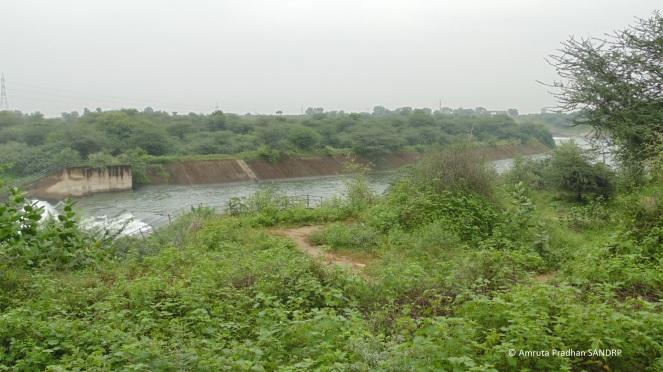 Narmada Canal 13