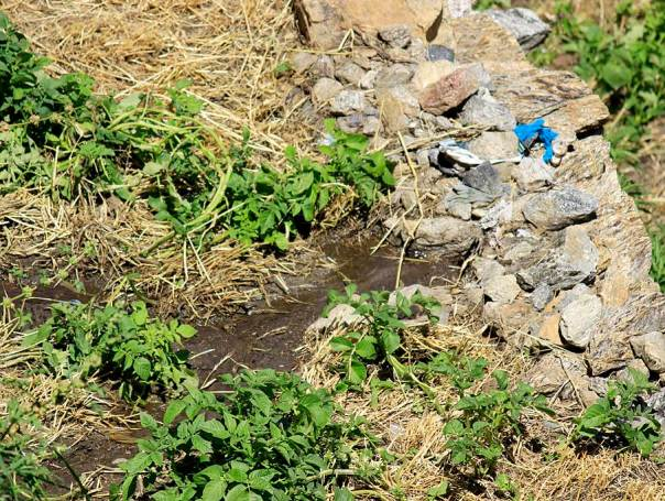 Ramanand Negi showed this water source in Urni village which emerged suddenly in 2005. This has come out in a location where there is a landslide getting active