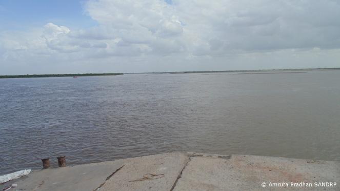 Narmada Estuary