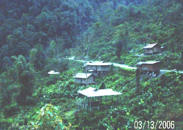 View of One of the affected villages show the rich forest that the project will destroy (Source - EIA)