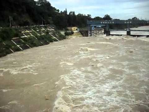 Ramaganga raging fter water release from Kalagarh Photo: article.wn.com
