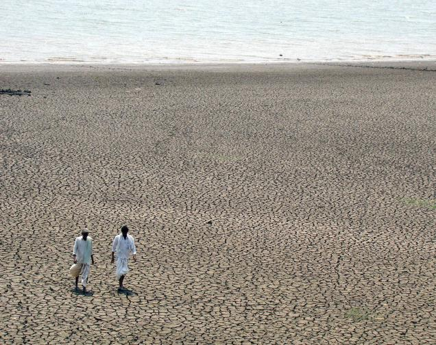 Sedimentation of the river upstream Sri Ram Sagar Project. Dams trap sediments, decreasing their live storage capacities, while starving the river downstream and killing the delta Photo from: The Hindu