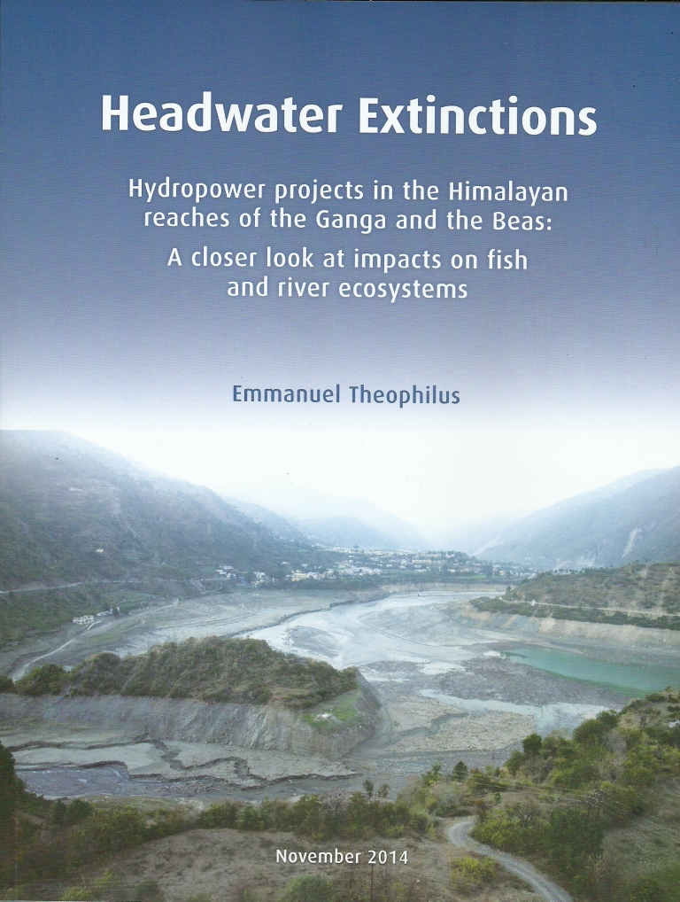 Front Cover of the report HEADWATER EXTINCTIONS