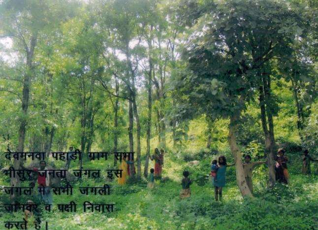 Forests Devmanwa Pahadi in village Bhisur