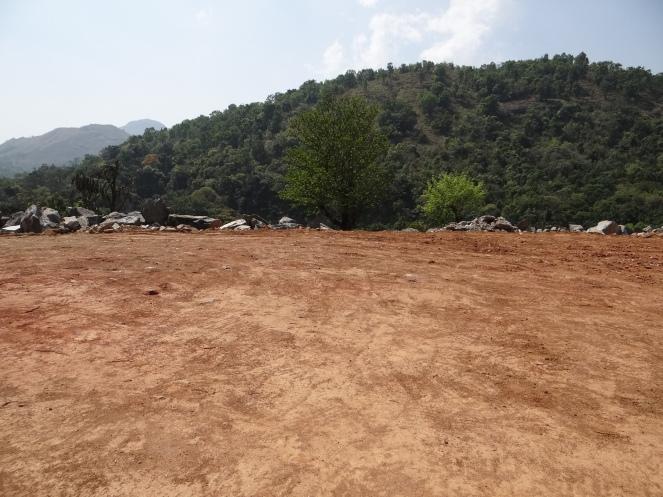 Clearing Forests for a 3 MW Beedalli HEP adjoining Pushpagiri Sanctuary in Karnataka Photo: Parineeta Dandekar