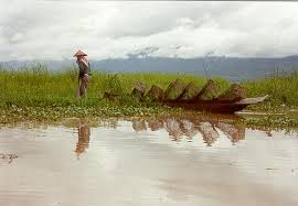 Fisherman at Loktak Lake, Manipur Photo: Wetlands International