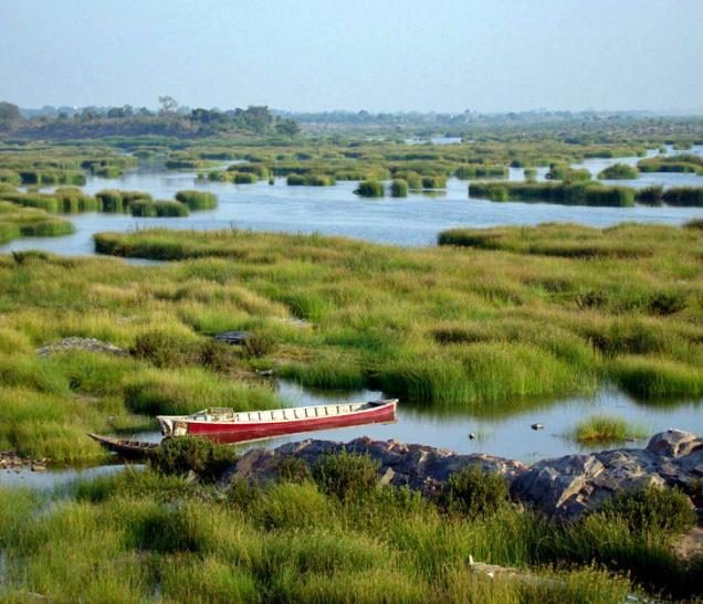 Pranahita River Photo: Harpal Singh, The Hindu