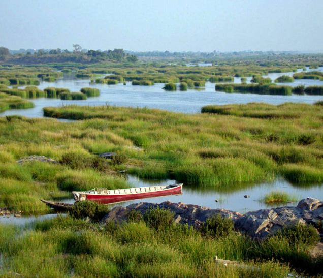 Pranahita River Photo: Harpal Singh, The Hindu