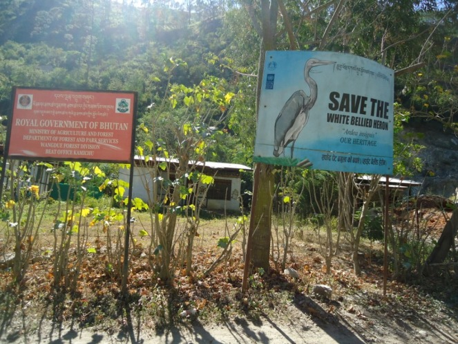Such Boards asking to Save White bellied Heron can be found many places, as this one along the Punatsangchu River