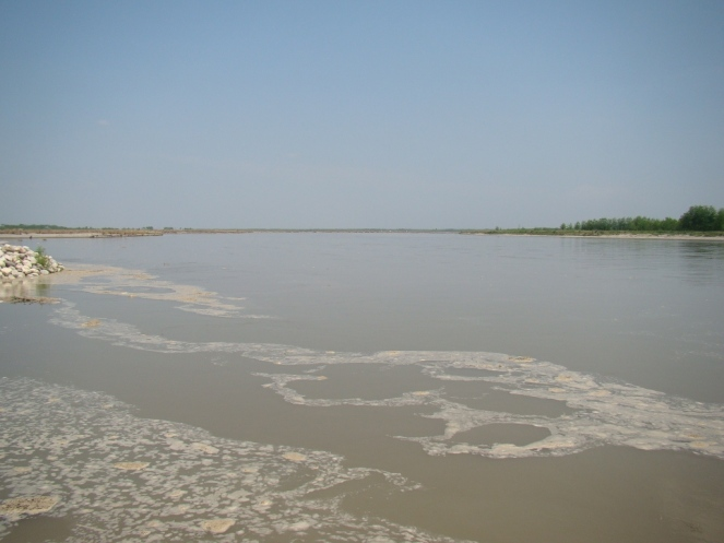 With fresh release of 3000 cusecs, thanks to unseasonal rains,  Yamuna River started swelling at Gumthala Yamuna Nagar (05 April 2015)