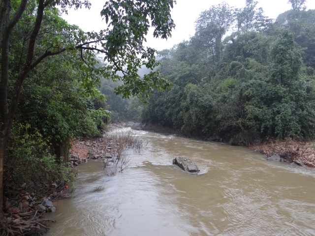 The Yettinahole Stream, close to location of proposed weir. Photo: Parineeta Dandekar