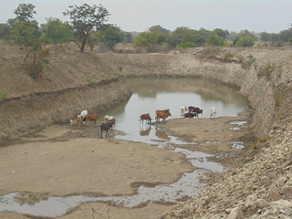 Widening and Deepening as per Shirapur pattern Photo: India Water Portal