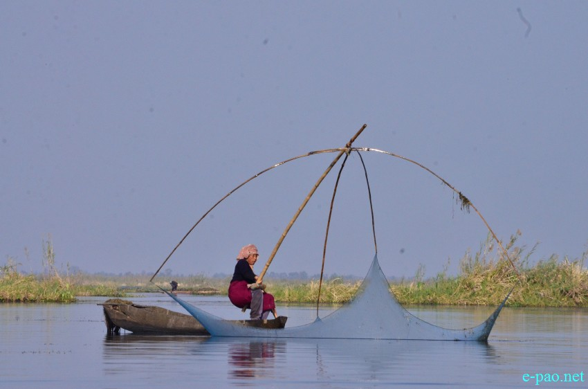 Fishing in Loktak Lake Photo: e-pao.net