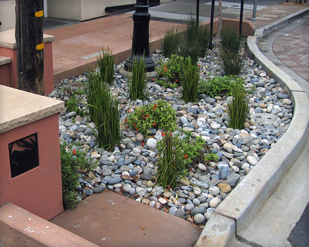 rain-garden-bioretention-planter