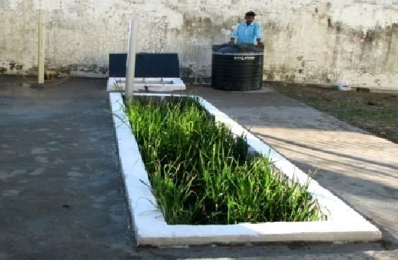 Reed Bed treatment technology in DRDO