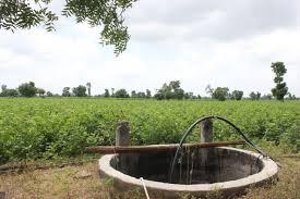 Well in a cotton field, Vidarbha Photo: blog.befundindia.com