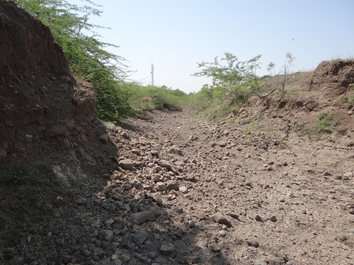 drought in marathwada Marathwada drought find the complete information on marathwada drought get news, articles, pictures, videos, photos and more of marathwada drought on postjagrancom.