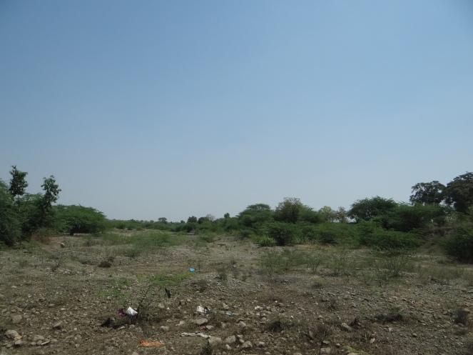 Dry Mehekari River bed in Beed Photo: Parineeta Dandekar