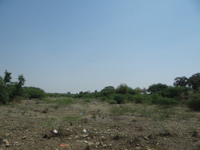 Dry Mehekari River bed in Beed Photo: Parineeta Dandekar