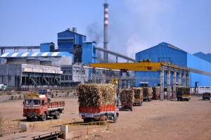 Gangakhed sugar factory in severely drought affected Parbhani. Not only takes water, but also pollutes water. Source: www.gangakhedicpp.com