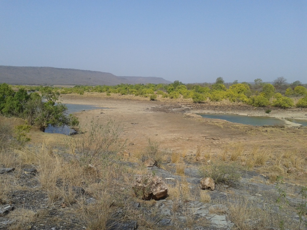 Almost dry river Ken within the Panna NP (Photo by Manoj Misra)